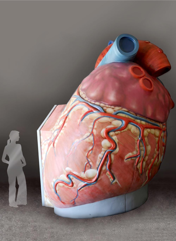 Herz Rückseite
