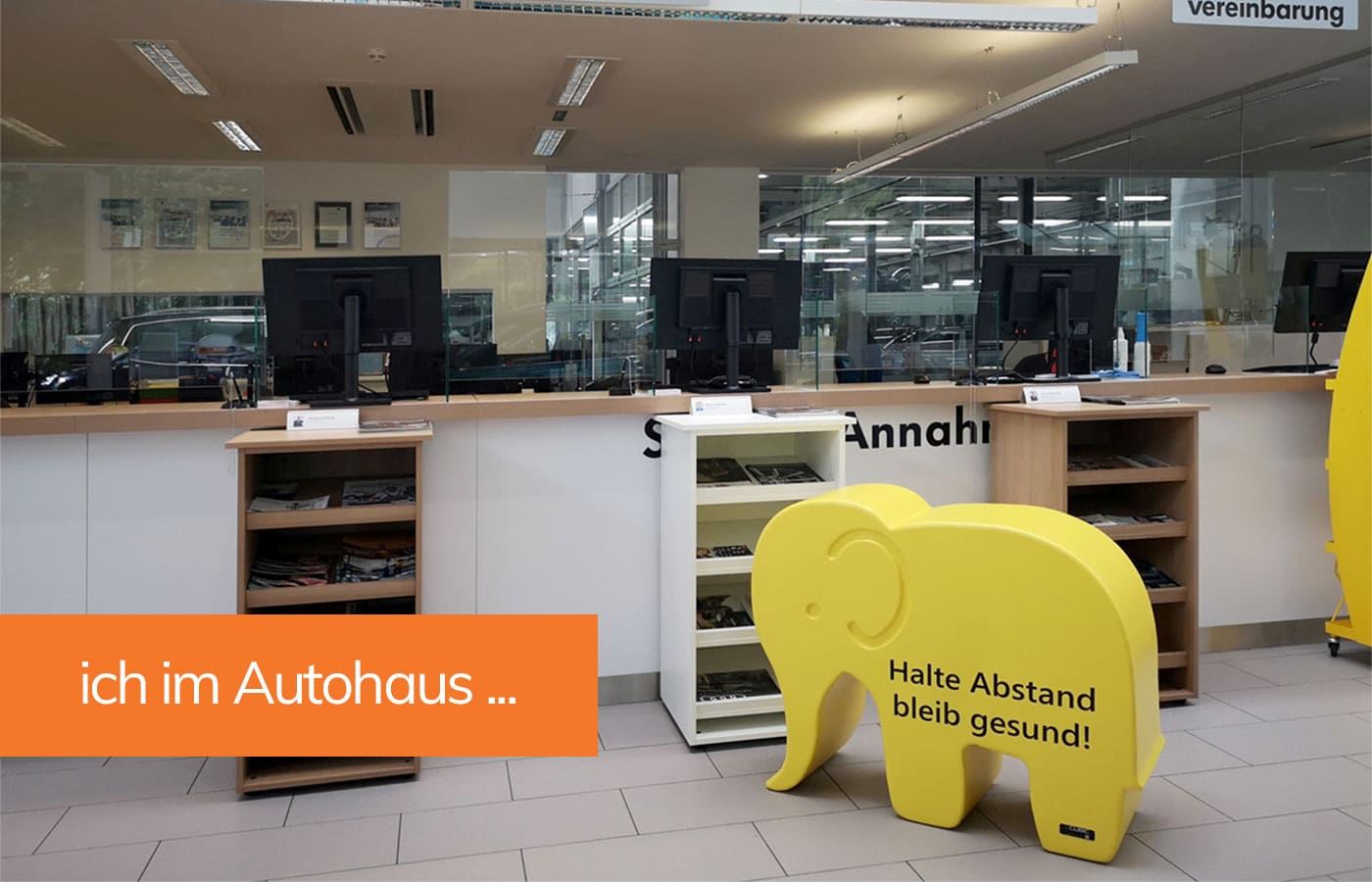 Babyelefant im Autohaus